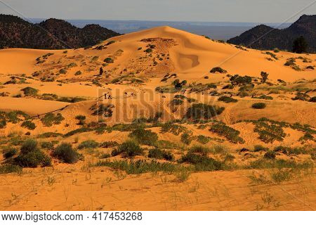 Utah / Usa - August 22, 2015: Sand And Dunes Area In Coral Pink Sand Dunes State Park, Utah, Usa