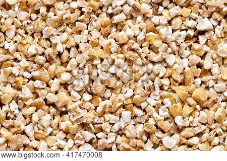 Raw Dried Broken Barley Cereal Grain Texture Background Macro Closeup. Barley Groats Coarse Barley S