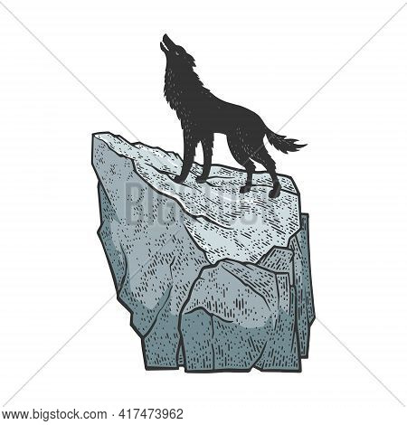 Coyote Wolf Howling On Rock Color Sketch Engraving Vector Illustration. T-shirt Apparel Print Design