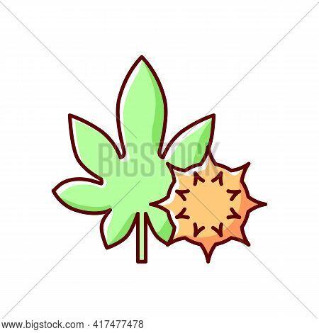 Castor Bean Rgb Color Icon. Exotic Flowering Plant. Ricinus Communis. Cause Of Allergic Reaction, Se