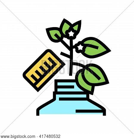 Growing Homeopathy Plant Color Icon Vector. Growing Homeopathy Plant Sign. Isolated Symbol Illustrat
