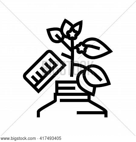 Growing Homeopathy Plant Line Icon Vector. Growing Homeopathy Plant Sign. Isolated Contour Symbol Bl