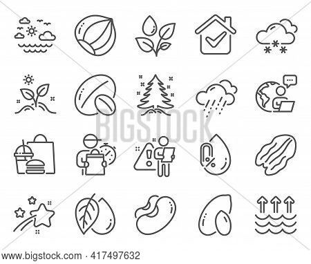 Nature Icons Set. Included Icon As Beans, No Alcohol, Grow Plant Signs. Mineral Oil, Rainy Weather,