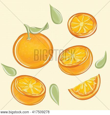 Orange Vector Set. Orange Whole And Slices Of Oranges. Organic Fruit. Cartoon Style. Vector Illustra