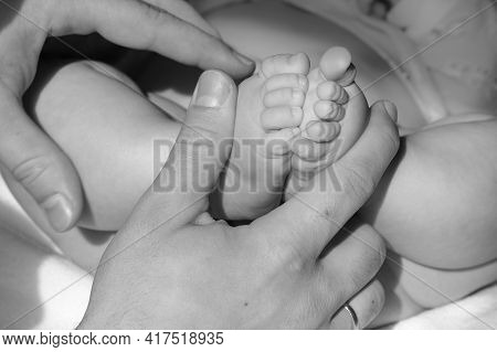 Plump Legs Of A Small Baby In Dads Hands, Love And Tenderness For The Baby