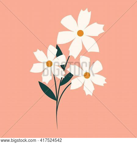 The Bouquet Of Daisies Icon. Three Daisies, Flat Illustration. Natural Floral Element Of The Design