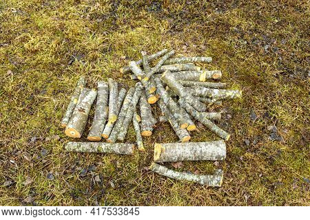Small Pile Of Felled Pieces Of Wood On The Grass.