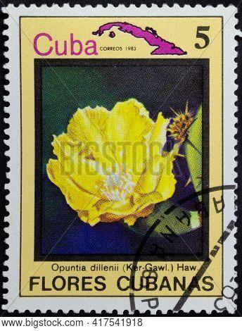 Republic Of Cuba - Circa 1983: Postage Stamp Of 'opuntia Dillenii' Printed In Republic Of Cuba. Seri