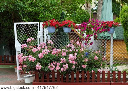 Flowers on a grid in the home garden