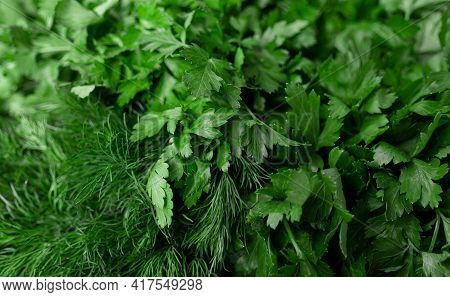 Dill And Parsley. Greenery. Dill, Parsley Background. Green On Market Shelf. Herbal And Salad Textur