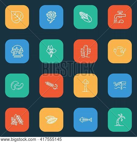 Ecology Icons Line Style Set With Carnation, Cashew, Corn And Other Marula Elements. Isolated Vector