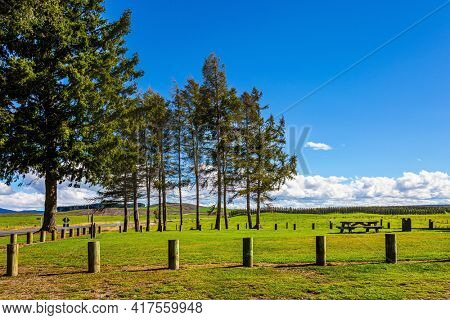 Travel to the ends of the Earth. New Zealand, North Island. Beautiful green grass lawns and dirt paths. Wonderful warm summer day. Shores of Lake Taupo.