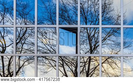 tree reflected in office building with the window open