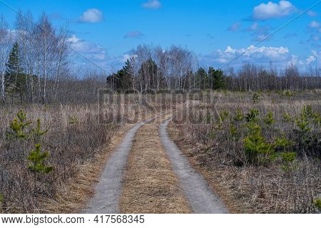 Spring landscape with a country road