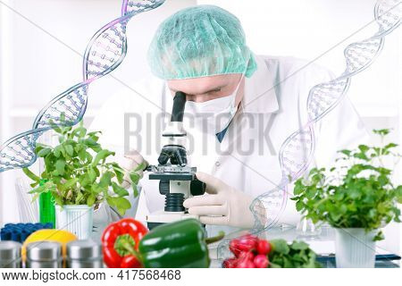 Researcher with GMO plants. Genetically modified organism or GEO is a plant whose genetic material has been altered using genetic engineering techniques
