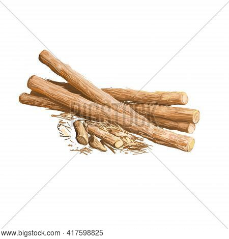 Liquorice Root Isolated Dried Sticks Isolated Digital Art Illustration. Licorice Glycyrrhiza Glabra,