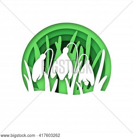 A Glade With Snowdrops In A Multilayer Technique. Spring Flowers Paper Cut Design. Suitable For Lase