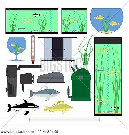 Equipment For Aquarium. Underwater Vector Elements With Fishes Plants Stones Seaweeds. Aquariums Of