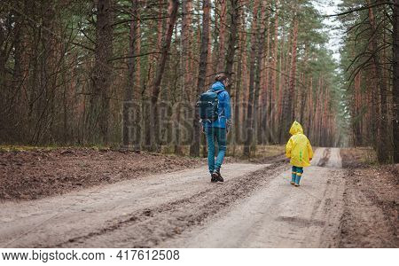 Mom And Child Walking Along The Forest Road After Rain In Raincoats Together, Back View