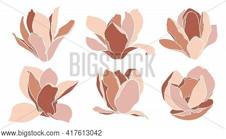 Magnolia Flowers, Isolated On White. Set Of Vector Elements. Style Floral Collage In Terracotta Tone