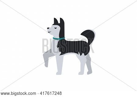 Sled Dog - Siberian Husky In A Collar. Dog Icon Or Logo Element.vector Illustration. Flat Style. Sta