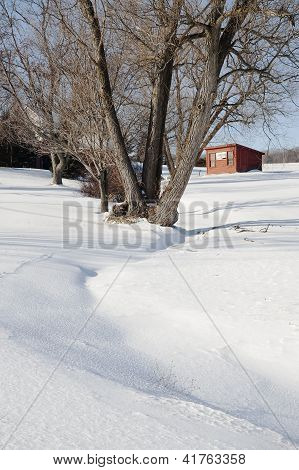 Brooder House in the Snow