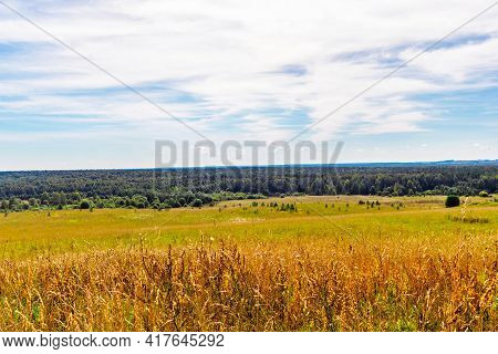 Landscape With Field And Woodland On The Horizon In Summer