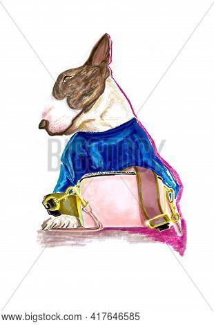 Hand-drawn Stylized Colorful And Bright Illustration Of A Pit Bull Terrier Puppy In A Fashion Outfit