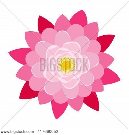 Pink Lotus Flower Isolated Vector Image. Aquatic Plant. Above View.