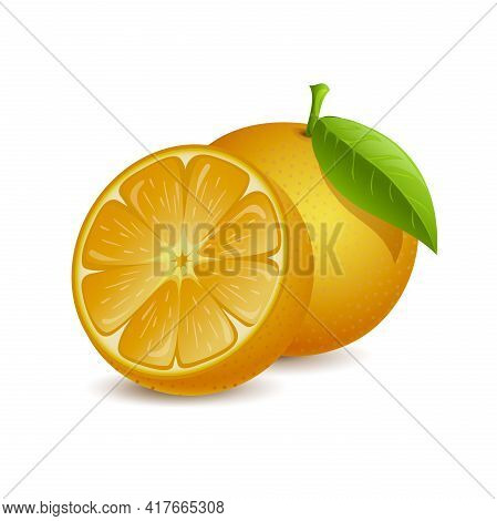 Orange Fruit Vector Cartoon Illustration Isolated On White Background. Fresh Whole And Half Sliced J