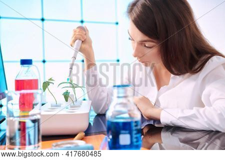 Young woman with a pipette in a plant laboratory. Study of the effect of fertilizers and growth accelerators on plants