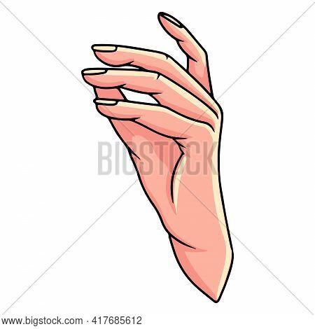 Hand Gesture. Woman's Hand. Hand Gestures. Cartoon Style.