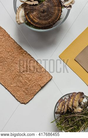 Vegan Leather Sample, Leather From Mushroom Mycelium, Eco Friendly Concept Alternative Bio Leather T