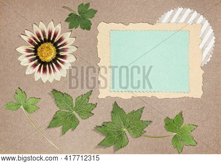 Page From An Old Photo Album. Flowers Gazania. Scrapbooking Element Decorated With Leaves, Flowers A