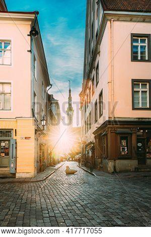 Tallinn, Estonia - December 21, 2017: Famous Old Traditional Town Hall In Sunny Evening. Sun Shining