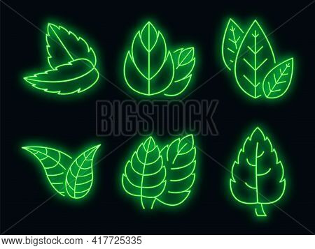 Mint Icons Set. Outline Set Of Mint Vector Icons Neon Color On White