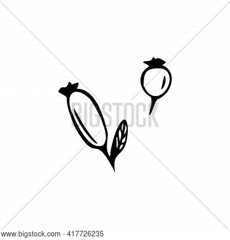Hand Drawn Berry Isolated On A White Background. Doodle, Simple Outline Illustration.