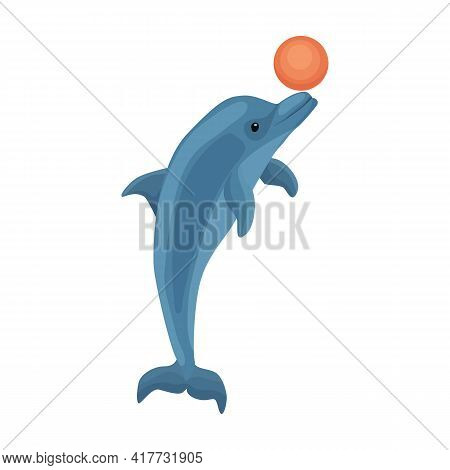 Dolphin Vector Icon.cartoon Vector Icon Isolated On White Background Dolphin.