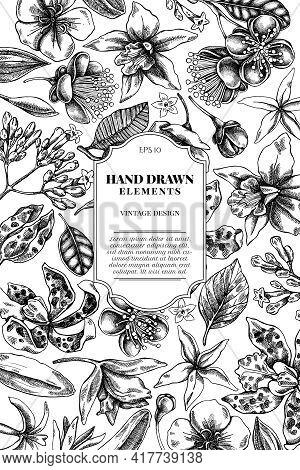 Card Design With Black And White Laelia, Feijoa Flowers, Glory Bush, Papilio Torquatus, Cinchona, Ca