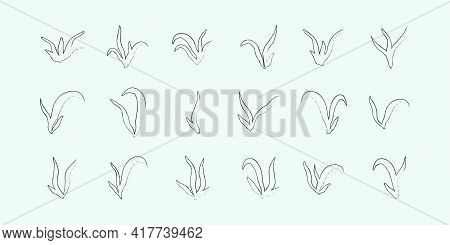 Set Of Lineart Seaweed Algae Aquatic Water Plant Grass For Aquarium. Isolated On White Vector Hand D