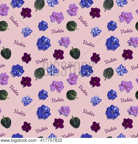 Seamless Pattern With Pink And Blue Violet Flowers. Viola Heads Isolated On Pink Background. Letteri