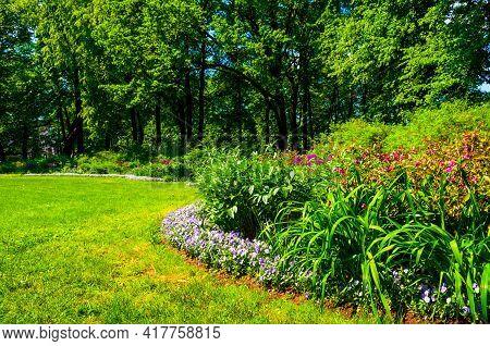 Grass field, grass background.Summer garden. Garden with fresh green grass, flowers, bushes and trees. Garden landscaping, fresh grass lawn, curve flowerbed with flowers and grass