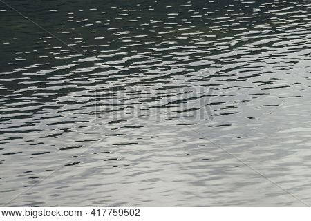 Texture Of Silver Green Calm Water Of Lake. Meditative Ripples On Water Surface. Nature Minimal Back