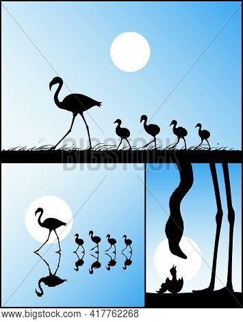 Flamingo Family. Endangered Bird Isolated Silhouette. Mother And Child