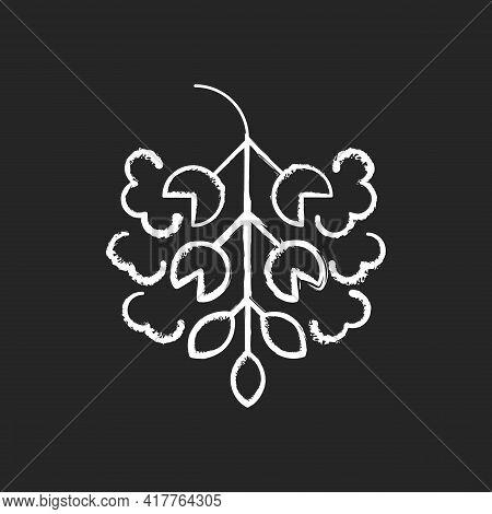 Poplar Tree Pollen Chalk White Icon On Black Background. Cottonwood Plant. Cause Of Allergic Reactio