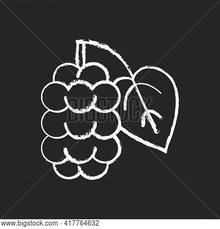 Mulberry Chalk White Icon On Black Background. Morus Fruit, Blackberry On Branch. Fresh Food Ingredi