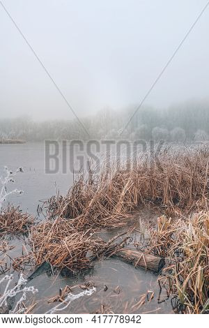 Winter Forest On The River At Sunset. Panoramic Landscape With Snowy Trees, Sun, Beautiful Frozen Ri