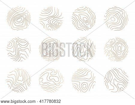 Tree Ring Clipart, Vector Logo Wood Ring. Circle Topography Map Stock Illustration