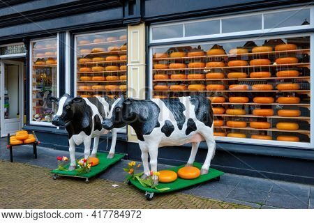 Cheese shop with heads of cheese in shop window and cow statues in Netherlands