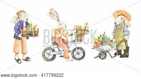 Watercolor Cute Bunnies Collection. Gardener With Box And Vegetables. Bunny On Bicycle. Bunny With W
